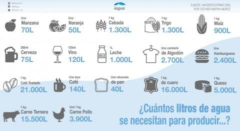 Huella hídrica: ¿Cuántos litros agua hacen falta producir...?