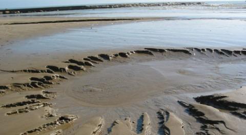 Agua subterránea descargando en el mar justo antes de la línea de costa, formando un pequeño torrente superficial en la playa de Les Fuentes (Alcocéber, Castelló). / J. Garcia-Orellana.