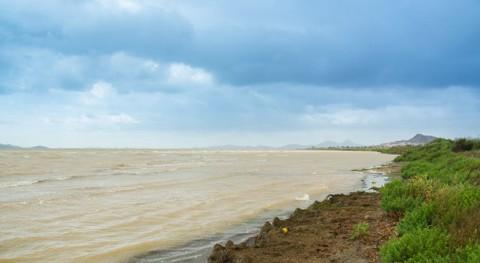 Mar Menor: historia colapso ambiental que pudo haberseevitado