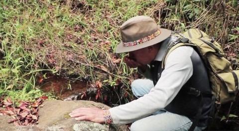 agua prístina, tesoro alturas Colombia