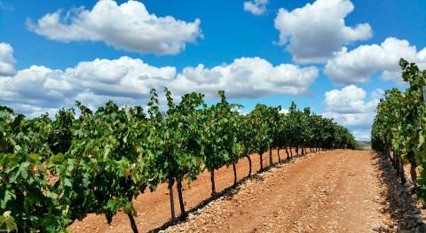 Rioja destina 1,2 millones euros agricultores y ganaderos afectados sequía