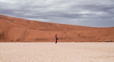 """"""" sequía"""": J. G. Ballard nuevo"""