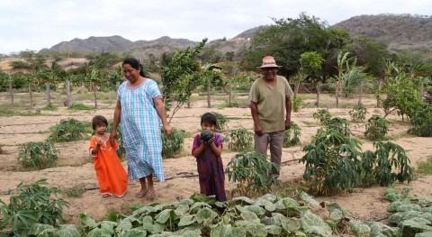 Desalación agua mar, solución Guajira