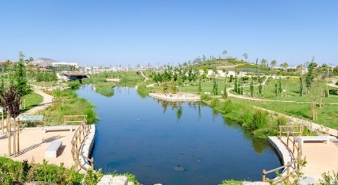 OCDE selecciona proyecto presentado Cátedra AQUAE como ejemplo gobernanza agua