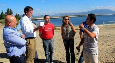 sistemas automatización podrían reducir 19% uso agua riego