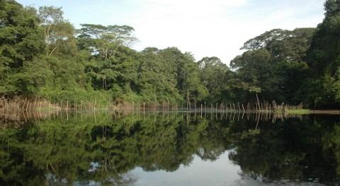 Proteger turberas es proteger al planeta