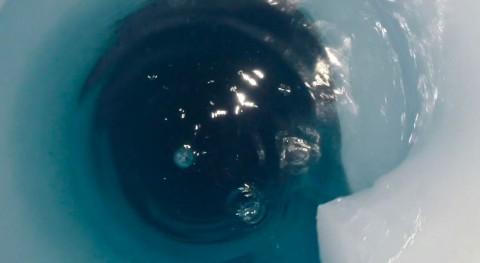 lago antártico enterrado evidencia restos animales otros tiempos