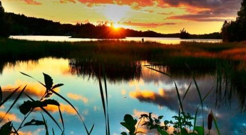 América Latina y Caribe lanza plan acción restaurar ecosistemas esta década
