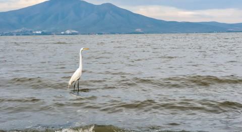 ¿Cuál es lago más grande México?