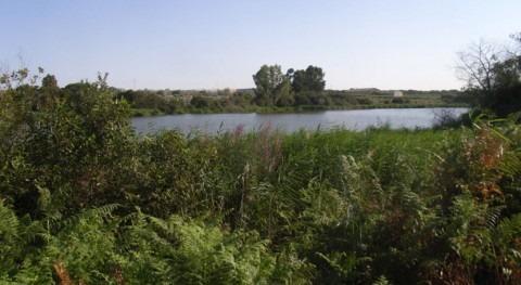 Condenado pagar 51.000 euros extraer agua ilegalmente laguna Madres 7 años