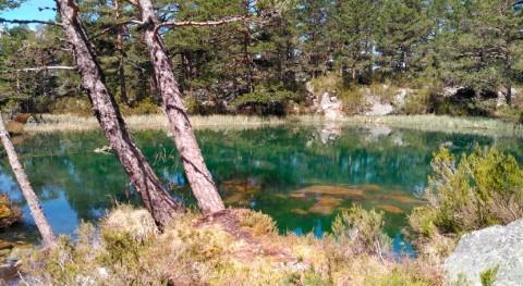 Soria reducirá vulnerabilidad bosques frente al cambio climático