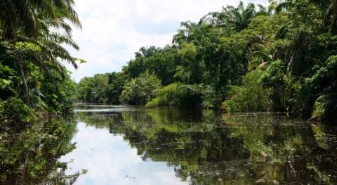 Honduras designa al Sistema Humedal Laguna Alvarado Humedal Importancia Internacional