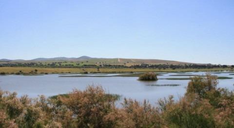 Laguna de los Tollos