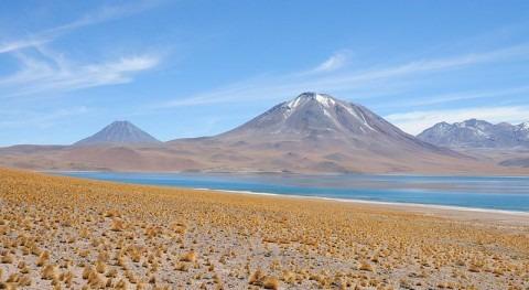 Laguna Miscanti en San Pedro de Atacama
