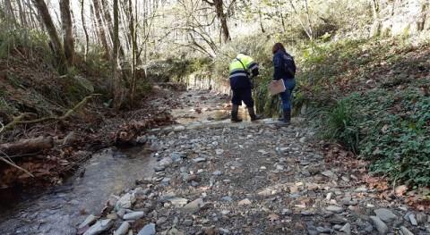 URA concluye eliminación 11 azudes tramo 360 metros cauce río Landarbaso