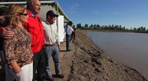 Más 102 millones dólares destinará Chile concursos Ley Riego este año
