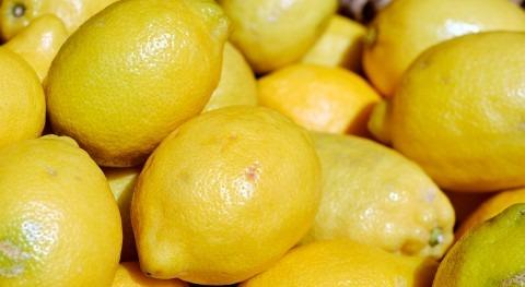 busca tratamiento aguas sostenible residuos fabricación jugo limón