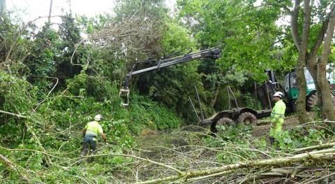 CHC acomete limpieza cauces ríos Valdediós y Linares Villaviciosa