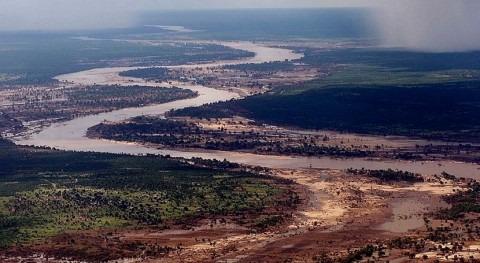 brote cólera Mozambique ya afecta más 1.200 personas