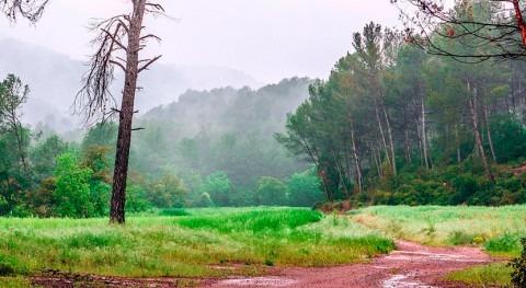 Junio 2018 España, húmedo y temperaturas moderadas
