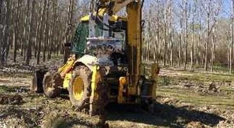 Comienzan trabajos mantenimiento finca Ropera Andújar