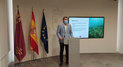 Región Murcia prohíbe uso fertilizantes nitrogenados zona 1 Mar Menor