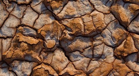sequía y conflictos agravan inseguridad alimentaria