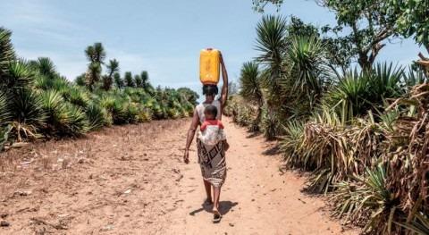 cada cinco niños mundo carece agua suficiente necesidades diarias