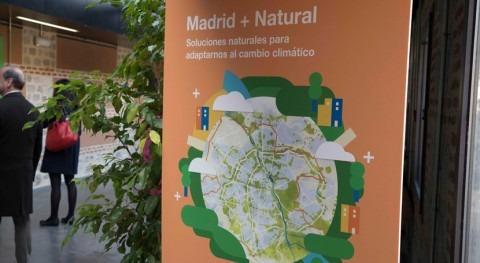 Madrid + Natural: ciudad se prepara adaptarse al cambio climático
