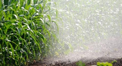 regadío contribuye suavizar clima zonas Medio Oeste EE. UU.