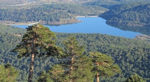 Agua forestal: necesario e innovador enfoque mundo forestal mediterráneo