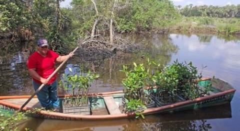 México adapta humedales al cambio climático