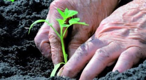 retos gestión agua agricultura