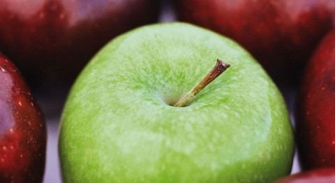 cambio climático compromete cultivo manzana Girona