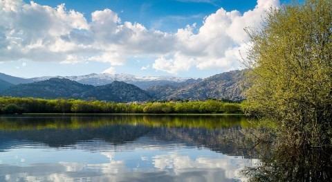 estudio demuestra que agua potable Madrid no conlleva riesgos salud