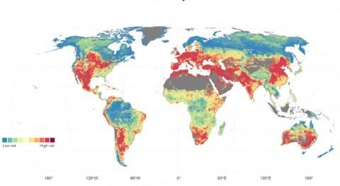 ¿Qué áreas mundo están riesgo mala calidad agua?