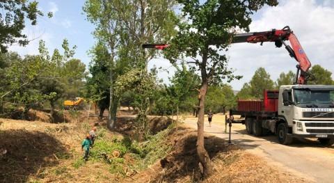 CHJ desarrolla programa mantenimiento y conservación cauces públicos Valencia