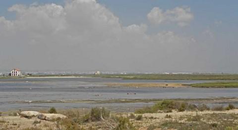nivel freático produce entradas incontroladas agua al Mar Menor, expertos