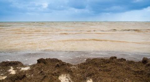 Mar Menor lleva décadas enfermo