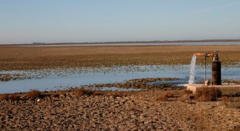 Empeoran reservas agua subterránea Doñana