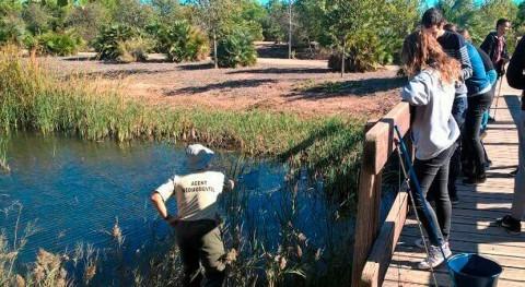 España designa Marjal Almenara como sitio Ramsar