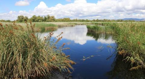 aguas residuales amenazan 33% Áreas Importantes Aves España