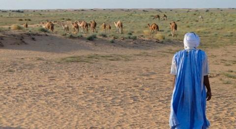 sequía causa grave desnutrición niños mauritanos