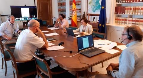 Reunión Ordinaria Comité Ejecutivo MCT, presencial y videoconferencia