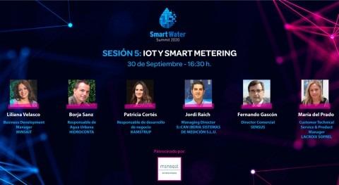 IoT y Smart Metering, herramientas visibilizar problemas ocultos agua