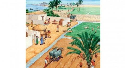 agua agricultura como origen urbanismo
