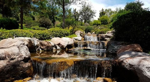 Expertos mexicanos elaboran propuesta ley agua subterránea país