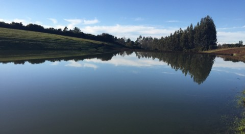 CNR y IMTA, unidos uso eficiente agua