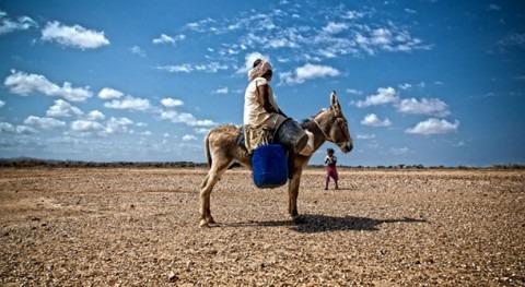 Investigadores españoles rastrean móviles migraciones debidas al cambio climático
