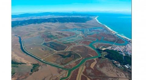 MITECO estudiará impacto ambiental EDAR Barbate-Zahara Atunes